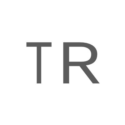 the-responsive.com